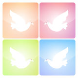 Peaceful Dove Icons Royalty Free Stock Photography