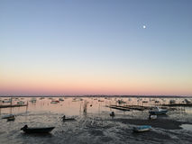 Peaceful Dusk on Le Canon Oyster Village, Cap-Ferret Peninsula, Bassin d'Arcachon, Gironde, South West France Stock Image