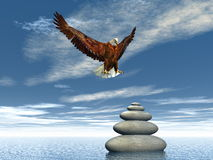 Peaceful eagle - 3D render. Eagle landing upon balanced pebbles - 3D render Stock Photos