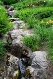 Peaceful garden Royalty Free Stock Photos