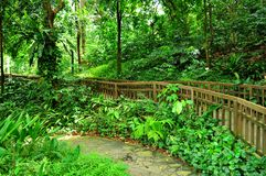 Peaceful garden with forested background Royalty Free Stock Photos