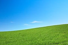Peaceful grassland Stock Photos