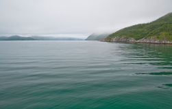Peaceful green fiord water. Scenic landscape in Bindal in Nordland, Norway on a cloudy summer day Royalty Free Stock Image