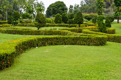 Peaceful Green Garden Royalty Free Stock Images