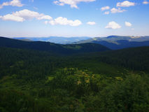Peaceful green mountains covered of grass under the clear blue sky Royalty Free Stock Photography