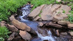 Peaceful, Gurgling Mountain Stream 01 stock video