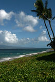 Peaceful hawaii beach scene. In the daytime Stock Image