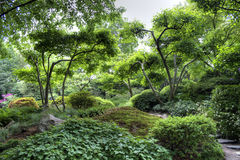 Peaceful japanese garden Stock Photos