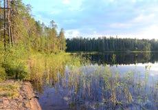 Peaceful Karelian lake Royalty Free Stock Photos