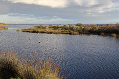 Peaceful Lagoon Royalty Free Stock Photo