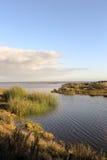 Peaceful Lagoon Stock Image