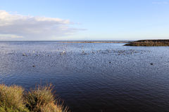 Peaceful Lagoon Royalty Free Stock Image