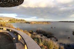 Peaceful Lagoon Stock Photos