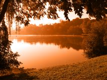Peaceful lake. Tree by the lake with fog floating over the water (orange toned Stock Images