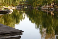 Peaceful lake. In the willow shadow park at beijing Stock Images
