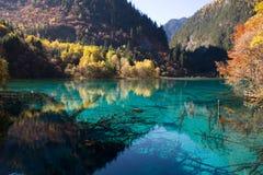 Peaceful lake Royalty Free Stock Images