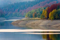 Peaceful lake in Autumn. And dense forest in background Royalty Free Stock Photography