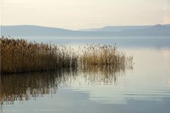 Peaceful Lake Balaton in autumn Stock Images