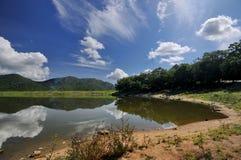 Peaceful lake. A peaceful lake so beautiful Royalty Free Stock Images