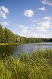 Peaceful lake inside forest. Before sunset stock photography