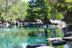 Peaceful Lake Royalty Free Stock Photo