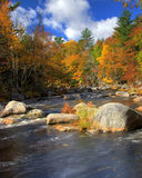 Peaceful lake or river with autumn trees Royalty Free Stock Photography