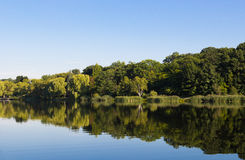 Peaceful Lake in the Summer Stock Photo