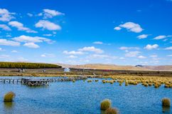 Peaceful lake under the blue sky in deep autumn on the grass land Royalty Free Stock Photo