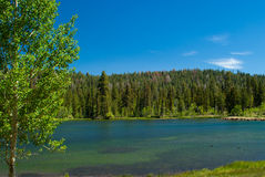 Peaceful lake in utah Royalty Free Stock Image