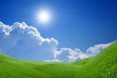 Peaceful landscape. Green grass field, bright sun, blue sky, white clouds - heaven on earth Royalty Free Stock Photos