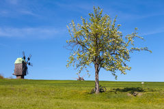 Peaceful landscape with windmill Stock Image