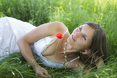 Peaceful meadow royalty free stock photography
