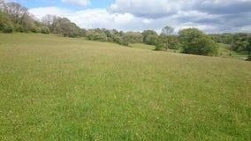 Peaceful Meadow Stock Photos
