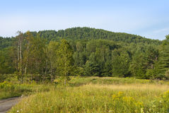 Peaceful Meadow and Round Hill Royalty Free Stock Images