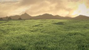 Peaceful meadow at sunset. With cloudy sky and mountains in the horizon. 3d illustration Royalty Free Stock Photos