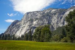 Peaceful meadow in Yosemite Royalty Free Stock Photo