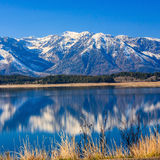 Peaceful moment at lake Royalty Free Stock Images