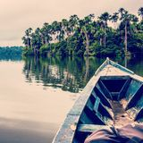 A peaceful moment. In a boat at Lake Sandoval, South America, Peru, Peruvian Amazon. Madre de Dios Royalty Free Stock Photo