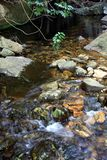Peaceful Mountain Stream Royalty Free Stock Photography