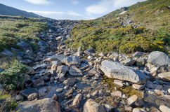Peaceful mountain stream in Ireland Stock Photography