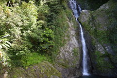 Peaceful mountain waterfall in Puerto Rico Stock Images