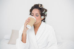 Peaceful natural brunette drinking from disposable cup Royalty Free Stock Photography
