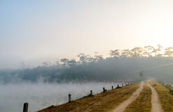 Peaceful natural pond in morning at Galyani Vadhana District Royalty Free Stock Photography