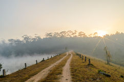Peaceful natural pond in morning at Galyani Vadhana District Royalty Free Stock Image