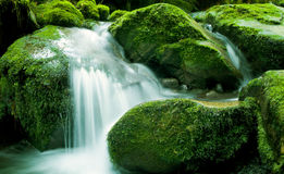 Peaceful Nature Green Cascading Waterfall Stock Image