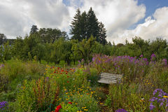 A peaceful park bench in a flower garden Stock Images