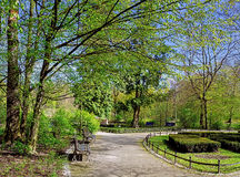 Peaceful park in the city Royalty Free Stock Image