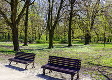 Peaceful park in the city Stock Image