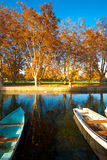 Peaceful Park Pond Boats Royalty Free Stock Photography