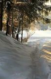 Peaceful path through the snow Stock Photos